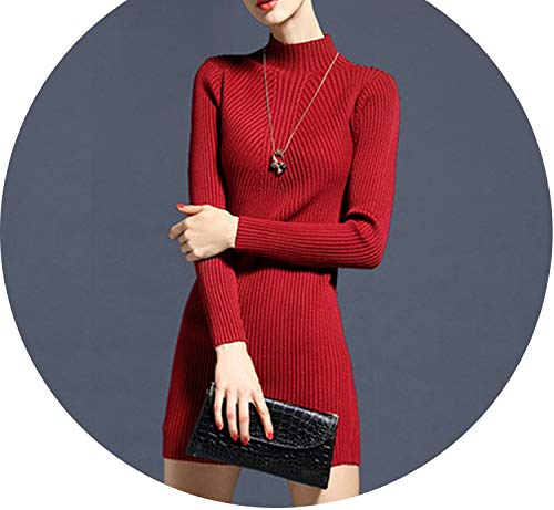Women Knitted Sweater Warm Dress Autumn Winter Skinny Knitted Turtleneck Warm Elegent Long ()
