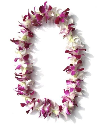 Fresh Orchid Hawaiian Leis - Hawaiian Lei - Fresh Single Strand Orchid Lei - White and Purple