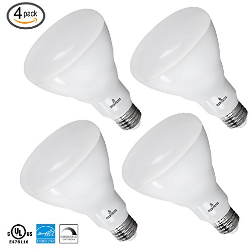 Led Light Bulbs 1100 Lumens in Florida - 7