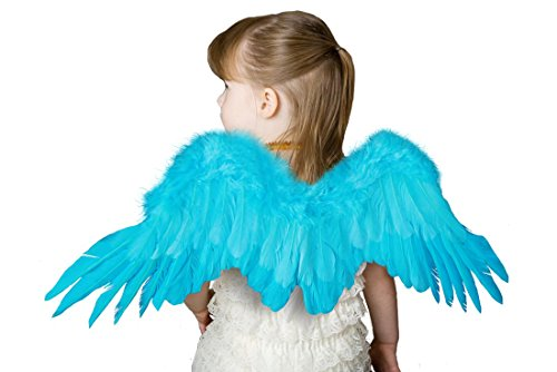 Fashi (Blue Bird Wings Costume)