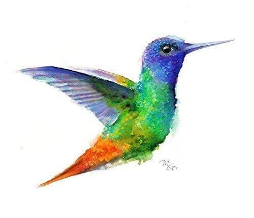 Hummingbird Watercolor Giclee Print