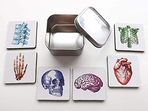 colorful Anatomy set of 4 or 6 Coasters 3.5 inch human body brain skull anatomical heart medical -