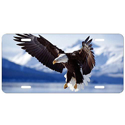 3D Flying Eagle Mountain Animal Novelty Auto License Plate Decorative Front Plate 6