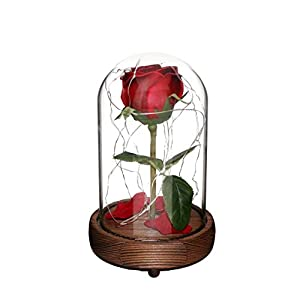 "CVHOMEDECO. Battery Operated w/Timer LED Lighted and Red PU Rose with Fallen Petals in a Glass Dome, Great Gift for Valentine's Day Wedding Anniversary Birthday (5-1/2""Dia. x 9"" H) 101"