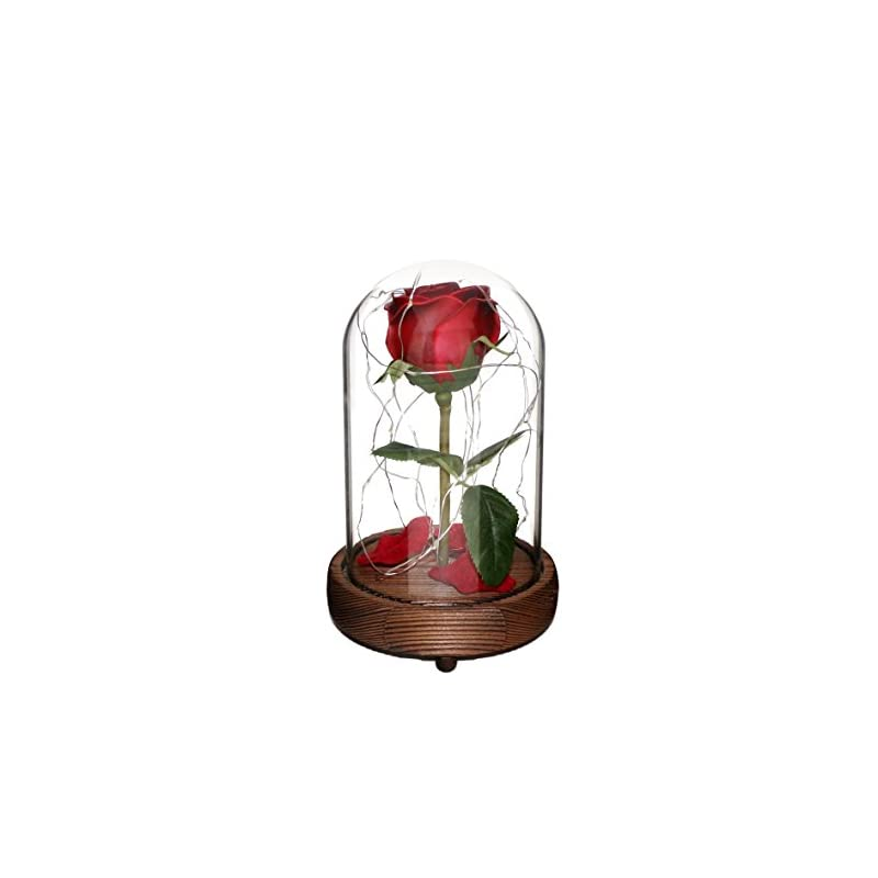 silk flower arrangements cvhomedeco. battery operated w/timer led lighted and red pu rose with fallen petals in a glass dome, great gift for valentine's day wedding anniversary birthday (dia. 5-1/2 x h 9 inch)