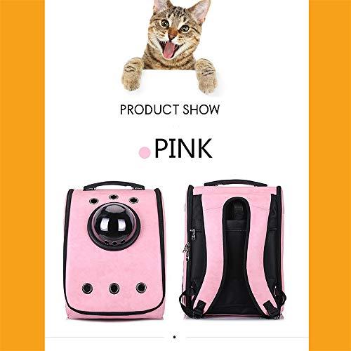 Amazon.com: DHCY Mochila de transporte para mascotas con ...