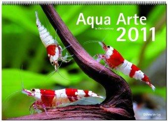 Aqua Arte 2011