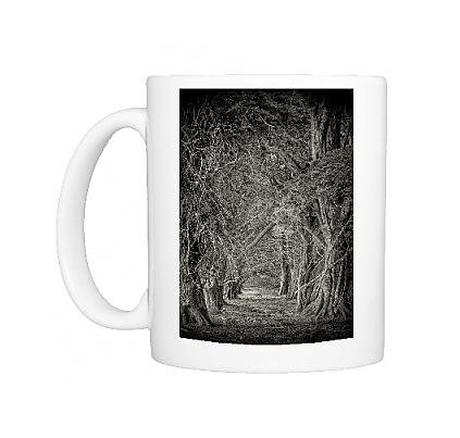 Photo Mug of Macrocarpa stand in the rurals of King Island, Bass Strait, Tasmania, Australia (Stand Strait Tree Stand compare prices)