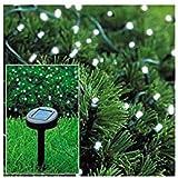 Solar Powered Christmas Lights String Light 50 LED White