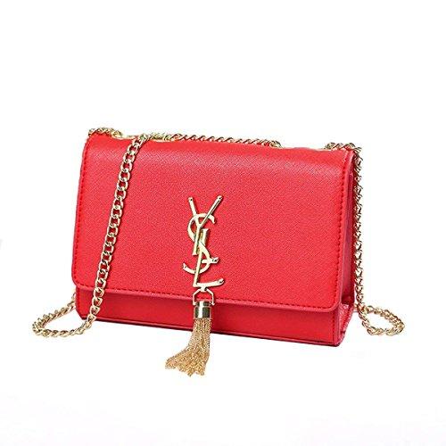 KALOY YSL Women's Summer Season Tassel Female Bag Package Chain Shoulder Bag Mini Bag Handbag (Black) Red