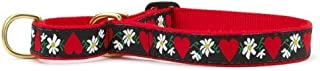 product image for Up Country Hearts & Flowers Martingale Dog Collar - X-Large (15-25 Inches) - 1 in Width