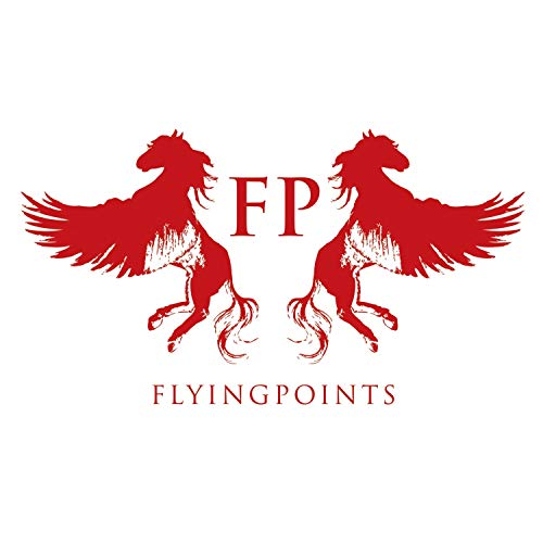 Flying Points ()