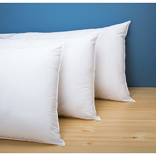758414 Cotton Bay Ashby Pillow King 20x36 33 Ounce Case Of 8