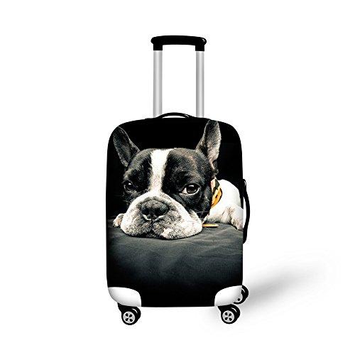 bulldog 29 case - 5