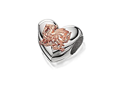 Clogau beads womens silver 9ct rose gold welsh dragon heart clogau beads womens silver 9ct rose gold welsh dragon heart milestones charm mozeypictures Gallery