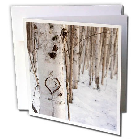 3dRose Danita Delimont - Forests - Alaska, Fairbanks. Heart with initials carved at side of trail - 1 Greeting Card with envelope (gc_278435_5)