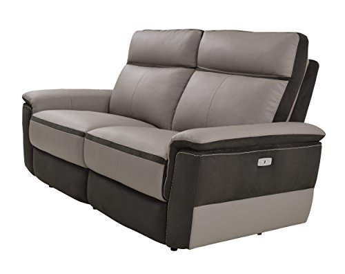 Homelegance Laertes Two-Tone Double Power Reclining Loveseat Top Grain Leather Fabric Match, Light Grey ()