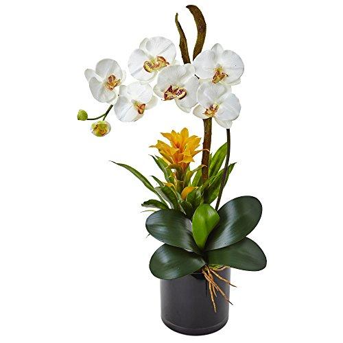 Nearly Natural Orchid and Bromeliad Silk Arrangement, Cream - Tropical Silk Flower Arrangement