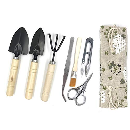 (Yotek Bonsai Tree Growing Kit Succulent Gardening Tools Set of 8 pcs - Include Pruner, Fold Scissors, Mini Rake, Bud, Cleaning Brush & Leaf Trimmer (8pcs))