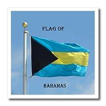 Sandy Mertens Flags of the World - Flag of Bahamas Photo - 6x6 Iron on Heat Transfer for White Material (ht_211396_2)