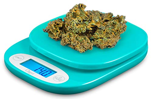 Ozeri ZK420 Garden and Kitchen Scale, with 0.5 g (0.01 oz) Precision Weighing Technology, in Teal (Renewed)