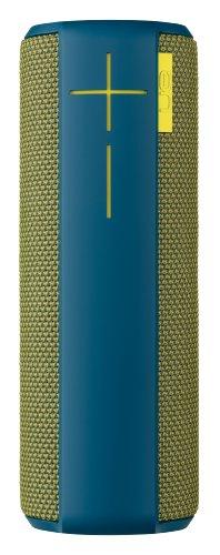 BOOM Wireless Bluetooth Speaker - Lake Moss