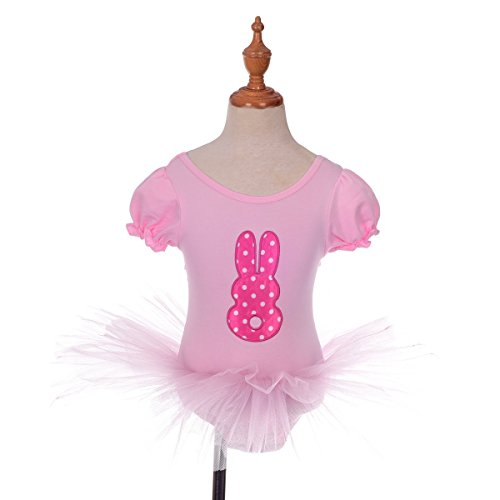 Dress (Rabbit Dance Costume)