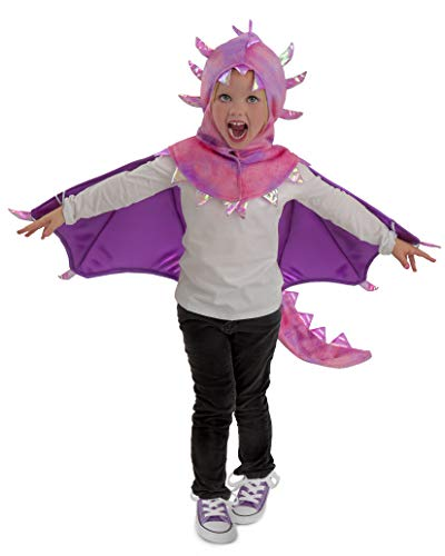 (Princess Paradise Kids Hooded Sadie Dragon Costume, X-Small,)
