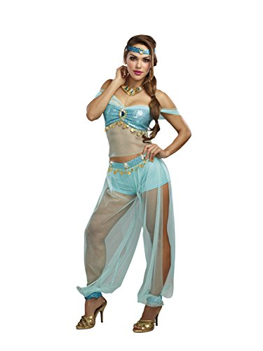 Princess Jasmine Adult Costumes (Dreamgirl Women's Harem Princess, Turquoise, L)