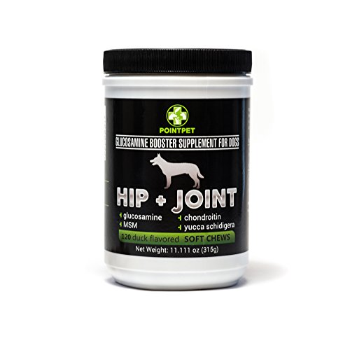 PointPet-Glucosamine-Chondroitin-for-Dogs-Hip-Joint-Supplement-for-Your-Dog-with-MSM-and-Omega-3-6-to-Boost-Dogs-Performance-and-Health