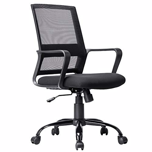 Ergonomic Office Chair Desk Chair Mesh Computer Chair Back Support Modern Executive Rolling Swivel Chair for Women, Men(Black)