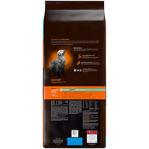 Picture of Purina Pro Plan Savor Shredded Blend Chicken & Rice Formula Adult Dry Dog Food - 47 Lb. Bag