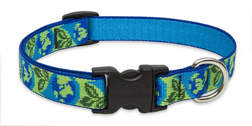 "LupinePet 3/4"" Earth Day 12""-20"" Adjustable Dog  Collar, 3/4"" W, 13""-22"" Neck"