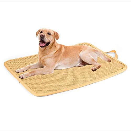 Mat - Antibacterial & Anti-mold Kennel Pad, Easy Cleaning Dog Crate Bed with Mesh Technology, Perfect Four Season Functions for Dogs, Cats and More - 36 Inchs ()