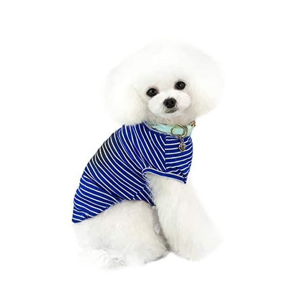 Pet Heroic Small Dog Cat Puppy Knit Sweater Clothes Comfortable Small Dog Sweater Cat Sweater Puppy Sweater Clothes for Small Dogs Cats Puppy Pink Red Blue Grey - Weight 2.5-20 pounds 5