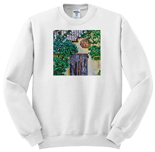 Price comparison product image 3dRose Danita Delimont - Architecture - Italy, Radda In Chianti, Old Doorway - Sweatshirts - Youth Sweatshirt Large(14-16) (SS_277605_12)
