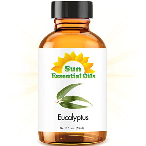 Eucalyptus (2 fl oz) Best Essential Oil - 2 ounces (59ml)