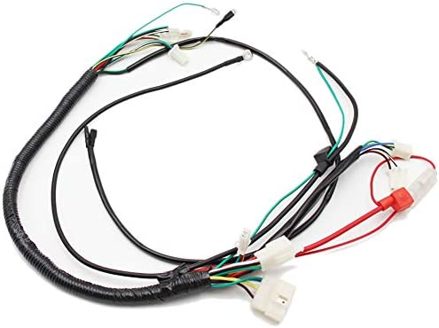 Amazon.com: Lifan 200cc Engine Wire Loom Harness Wiring Assembly For Honda  Motorcycle ATV Enduro Bike: AutomotiveAmazon.com
