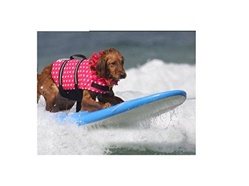 MIXMAX Summer Multi-Color Pet Safety Vest Outward Dog Life Jacket Ripstop Float Coat Puppy Swimming Cloth Plus Size (X-Large, Rose)