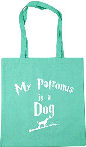 Shopping litres x38cm Beach A Mint 10 Bag HippoWarehouse Gym My Patronus Is Tote 42cm Dog fqO81FHYP