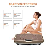 Gharpbik Vibration Fitness Machine Workout Platform Vibrating Platform Exercise & Workout Trainer, Balance Plate Exercise Equipment with Built-in Bluetooth Speakers(SP-CFM21)