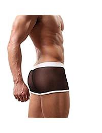 HP95 Men's Bikini Underwear, Mesh Transparent Boxers Bulge Comfy Underwear