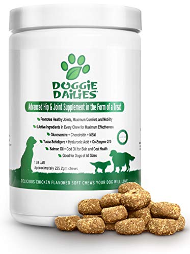 (Doggie Dailies Glucosamine for Dogs: 225 Soft Chews, Advanced Hip & Joint Supplement for Dogs with Glucosamine, Chondroitin, MSM, Hyaluronic Acid & CoQ10, Premium Joint Relief for Dogs Made in the USA)