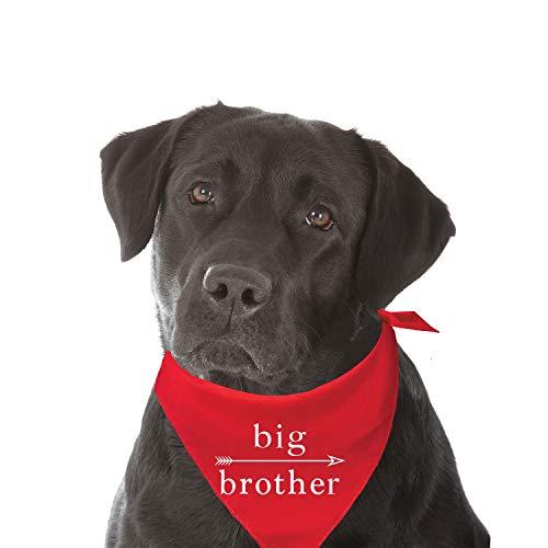 Big Brother Fashion Printed Dog Bandana (Assorted Colors) ()