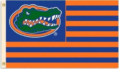 BSI NCAA Florida Gators Flag with Grommets, 3 x 5-Feet