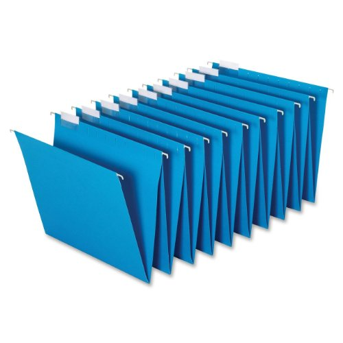 Globe-Weis Hanging Accordion Folders, Ten 1/5 Cut Tabs Per Set, 2 Sets per Box, Letter Size, Blue (HF20 BLU)