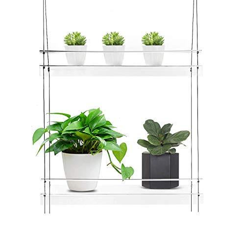 KUNZITE Hanging Window Plant Shelves (20