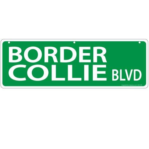 Imagine This Border Collie Street Sign
