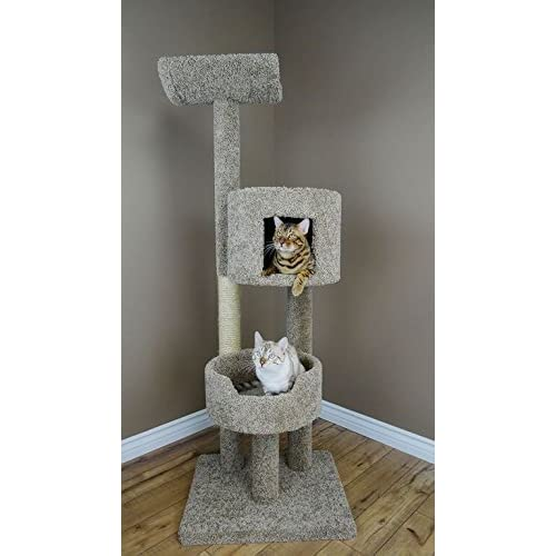 chic cat furniture attractive chic carpet cat tower 70 inch extra large tree furniture with cradle condo