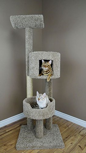 Large Cat Condo Tree for Large Cats, Green Carpet